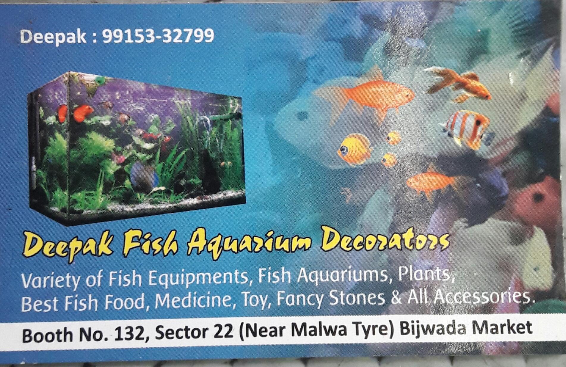 FISH AQUARIUM SHOP IN CHANDIGARH